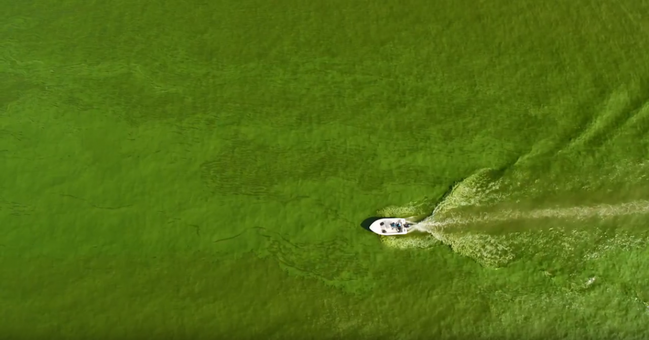 ScottsMiracle-Gro boat in the lake with algae bloom