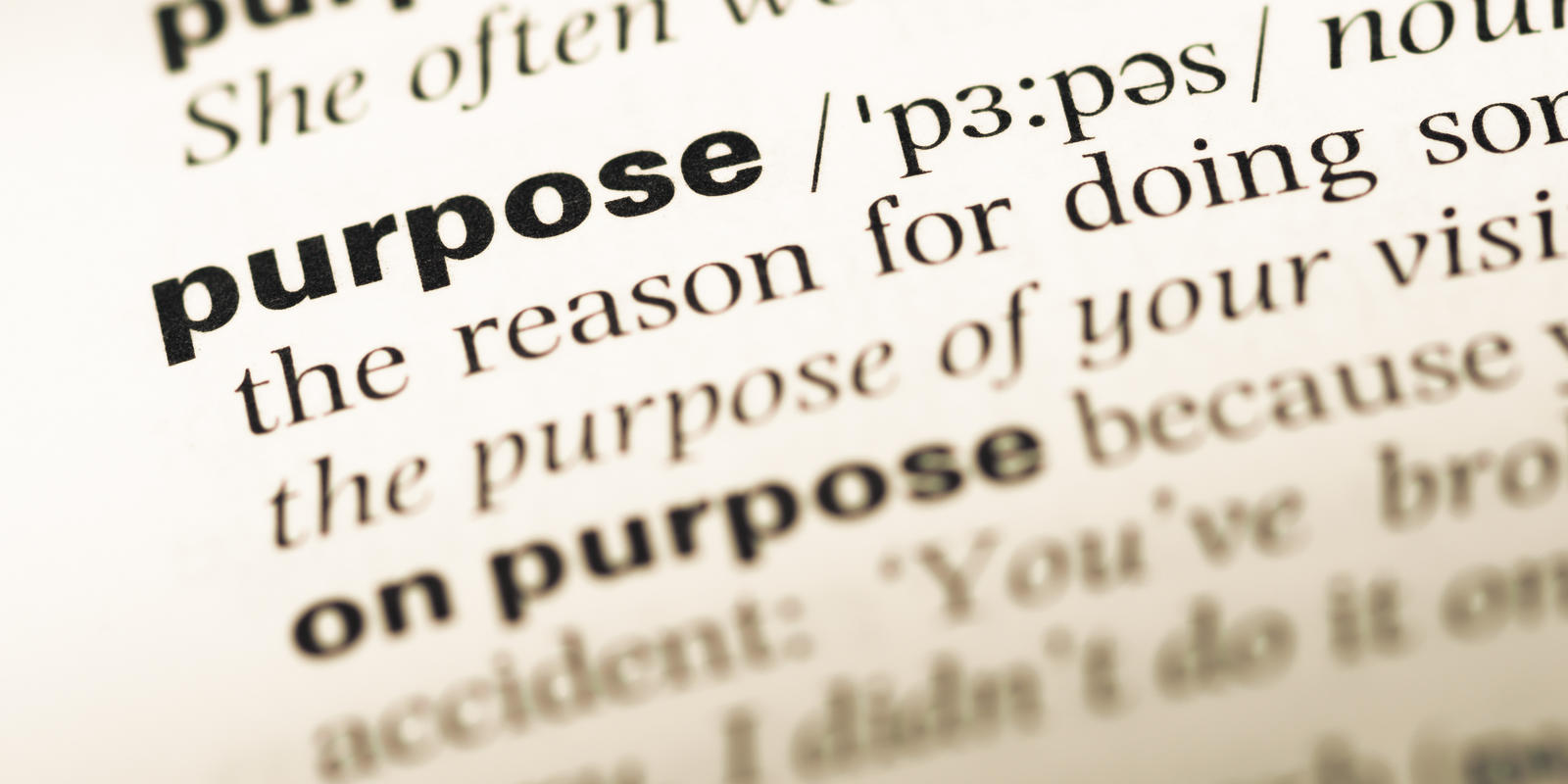 Purpose dictionary definition